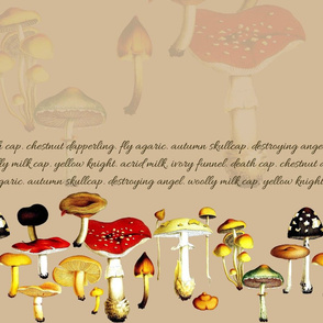 poison mushrooms (tan)