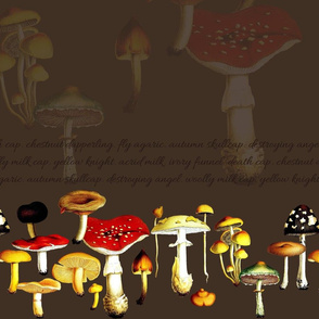 poison mushrooms (brown)