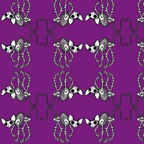 Curled Toes SphynxieBonez Flipped in Purple