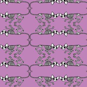 Skulking SphynxieBonez Flipped in Lavender