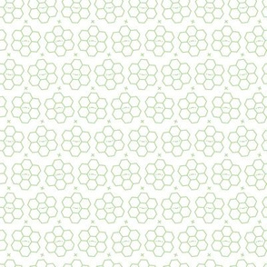 Hexagons // Green