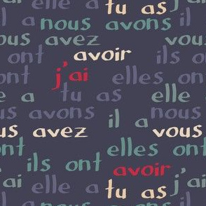 "Avoir - the French verb ""to have"" (blue grey)"