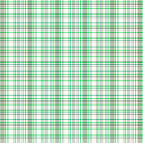 Plaid Light