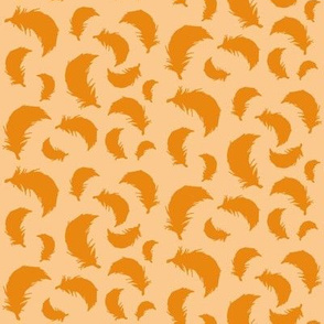 feathers orange