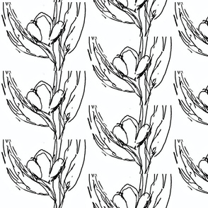 New Tapestry/Botanical Sketch