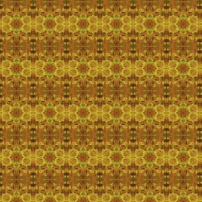 Bees Building Honeycombs