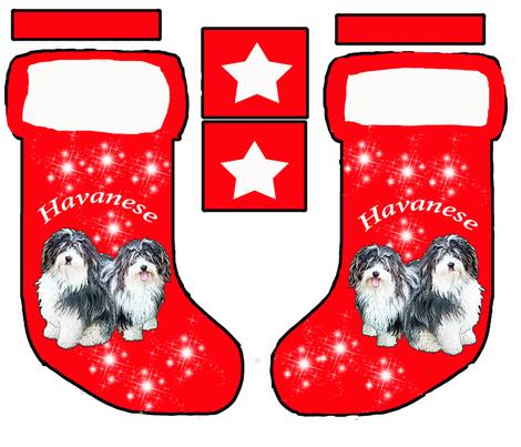 Havanese Christmass stocking pattern