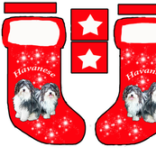 Havanese Christmass stocking pattern