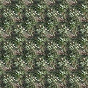 Gum Leaf Camo (Ref. 4298)