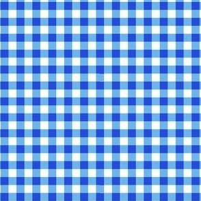 Blue Gingham Check 1/4""