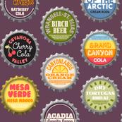 Soda Nation (2-liter Grape)