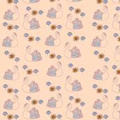 Swans blue apricot