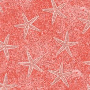 Starfish Coral Pink
