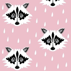 Raccoon pink