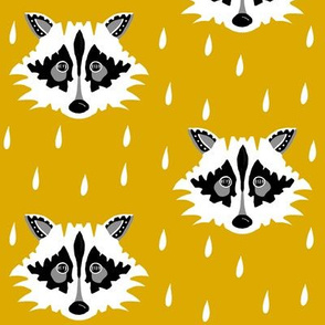 Raccoon mustard