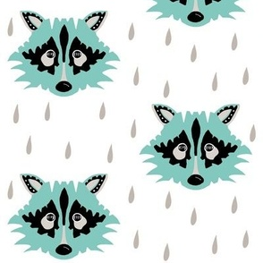 Raccoon blue