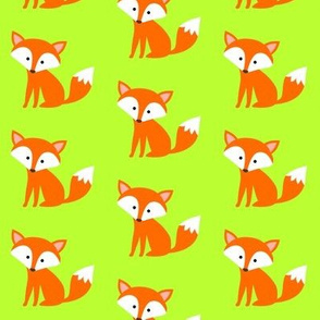Sitting Fox Lime