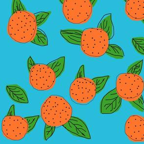 Sunkissed Oranges