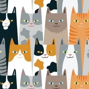 cats of many colors