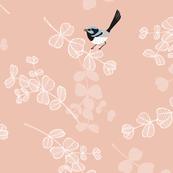 Blue Wrens - Peach