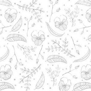 Pansies - Black & White