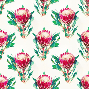 Simple Vintage Protea Pattern on Cream