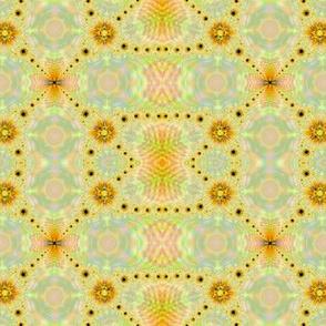 fractal complex