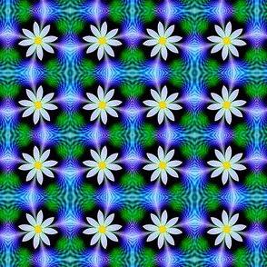 fractal daisy 2