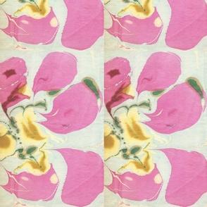 Fuchsia_Petals