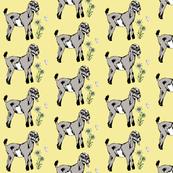 Rrrbaby_goat_shop_thumb