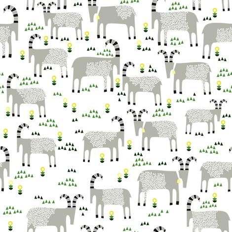 goats and grass