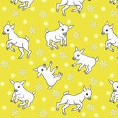 Little_goats_play_date