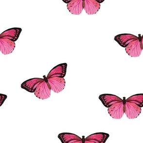 Botanical Butterflies, Pink