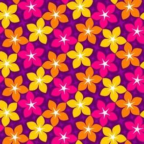 S43 karmic floral