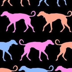 Rainbow Greyhound Black, Pink, Orange, Blue