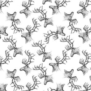 DeerPattern01