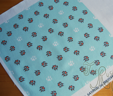 Trotting paw prints - coral on mint