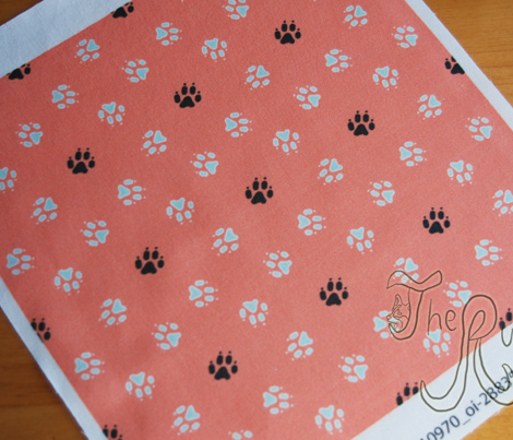 Trotting paw prints - mint on coral