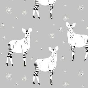okapi grey