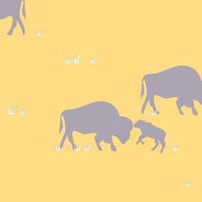 Southwest Bison desert yellow
