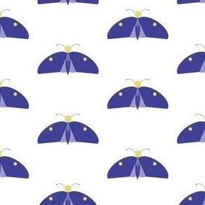 gigimigi_butterfly_32