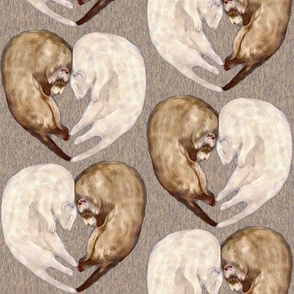 Ferret Love on Brown