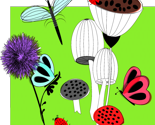 Rbotanical_sketchbook__plants_flowers_betterflies__dragonflies__mushrooms_toadstools_cute_nature_graphic_image_150dpi_thumb