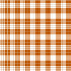 Spiced Pumpkin  and White ~ Traditional Plaid ~ Wee