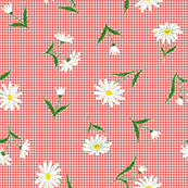 Daisies on red gingham