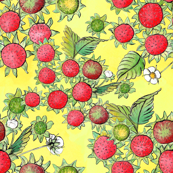 Strawberry Bottoms