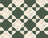 Rgreen_steeplechase_quilt_cheater_thumb
