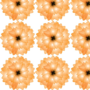 orange-blk-flower