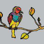 tropical_bird_on_branch