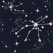 Zodiac Constellations - Taurus